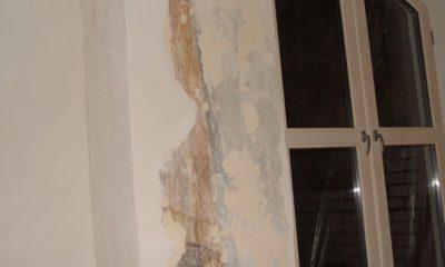 sienu-tinkavimas-ir-restauravimas8